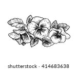 hand drawn pansy flowers ...   Shutterstock .eps vector #414683638
