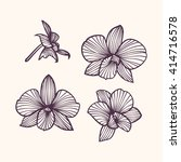 set of vector orchids. isolated ... | Shutterstock .eps vector #414716578
