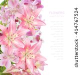 flowers background isolated on... | Shutterstock . vector #414767524