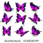 Stock vector beautiful of pink butterfly in different positions vector 414828199
