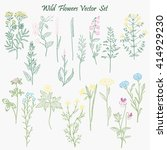 wild flowers set | Shutterstock .eps vector #414929230