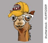 Camel Portrait In A Glasses An...
