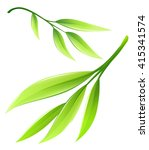 branch with green bamboo leaves.... | Shutterstock .eps vector #415341574