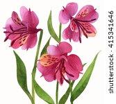 floral ornament  alstroemeria... | Shutterstock . vector #415341646