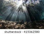 bright beams of sunlight filter ... | Shutterstock . vector #415362580
