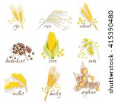 Cereals Icon Set With Rye Rice...