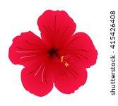 Flower. Hibiscus.