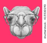 Portrait Of Camel With Glasses...