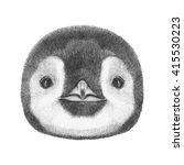 Portrait Of Penguin. Hand Draw...