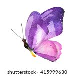 watercolor butterfly   isolated ... | Shutterstock . vector #415999630