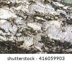 background texture of tree bark. | Shutterstock . vector #416059903