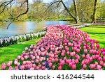 keukenhof park of flowers and... | Shutterstock . vector #416244544