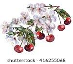 flower cherry and fruit ... | Shutterstock . vector #416255068
