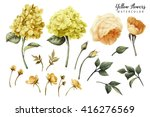 flowers and leaves  watercolor  ...   Shutterstock . vector #416276569