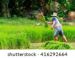 yasothon thailand   july 07 ... | Shutterstock . vector #416292664