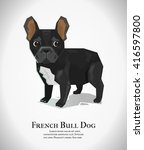french bulldog  vector... | Shutterstock .eps vector #416597800