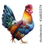 Rooster Color  Drawing. Colore...
