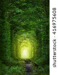 Small photo of Fantastic Trees - Tunnel of Love with fairy light afar, magic background
