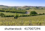 views of the wine producing... | Shutterstock . vector #417007294