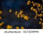tree flower | Shutterstock . vector #417204994