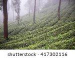 trip to mathikettan shola... | Shutterstock . vector #417302116