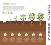 planting tree process... | Shutterstock .eps vector #417312718