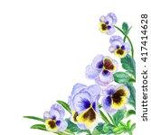 Viola Tricolor Watercolor....