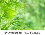 closeup nature view of green... | Shutterstock . vector #417582688