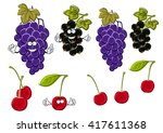 vine of delicious violet grapes ...