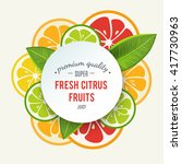 banner with stylized citrus... | Shutterstock . vector #417730963