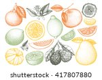 vintage vector ink hand drawn... | Shutterstock .eps vector #417807880