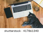 Stock photo lazy employee a cute grey cat working on the floor 417861340