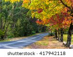 Autumn Landscape Road With...