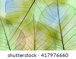a leaf texture close up | Shutterstock . vector #417976660
