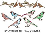 birds are drawn from a variety... | Shutterstock .eps vector #417998266