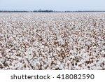 cotton fields ready for... | Shutterstock . vector #418082590