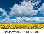 Panoramic Landscape In Dutch...