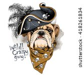 Bulldog Portrait In A Pirates...