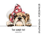 bulldog portrait in a headband. ...   Shutterstock .eps vector #418264618