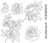 set of graphical roses ...   Shutterstock .eps vector #418284043