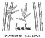bamboo trees with leaf white... | Shutterstock .eps vector #418313926