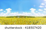 sunflowers field with nature... | Shutterstock . vector #418507420