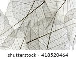 a leaf texture close up | Shutterstock . vector #418520464