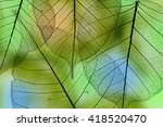 a leaf texture close up | Shutterstock . vector #418520470