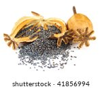 Poppy Seeds And Heads Isolated...