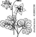 vector plant | Shutterstock .eps vector #41880238