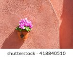 Pink Flowers On The Red Wall O...