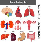 human anatomy set. human organs ... | Shutterstock .eps vector #418891798