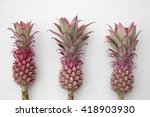 Mini Pink Pineapples