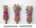 Mini Pink Pineapples